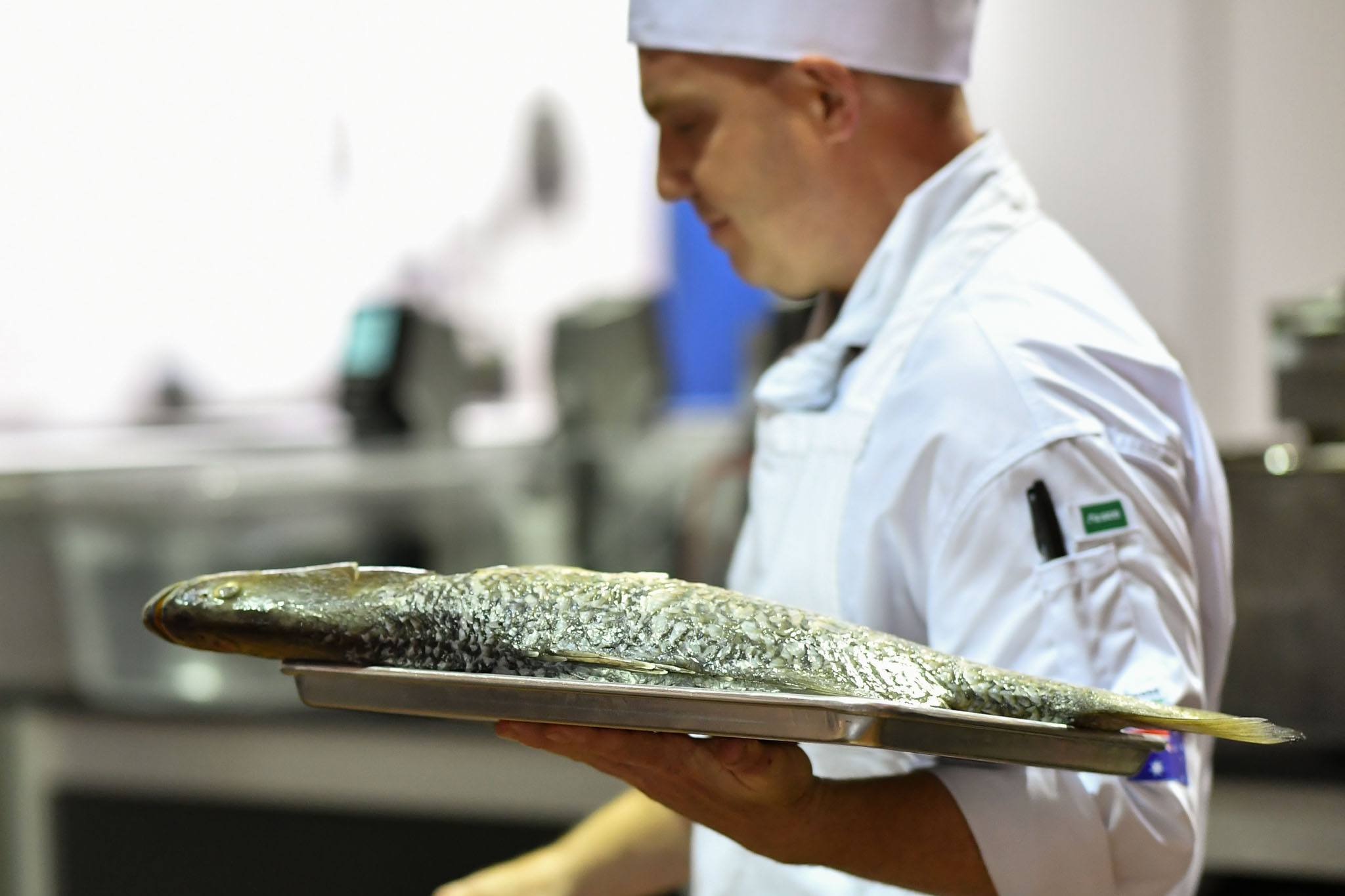Melbourne, 30 May 2017 - Michael Cole of the Georgie Bass CafÈ & Cookery in Flinders walks with a barramundi fish at the Australian selection trials of the Bocuse d'Or culinary competition held during the Food Service Australia show at the Royal Exhibition Building in Melbourne, Australia. Photo Sydney Low